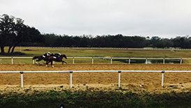 Jeromy Noseda Racing