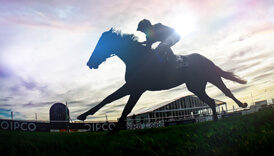 Springing into action at Newmarket Racecourses
